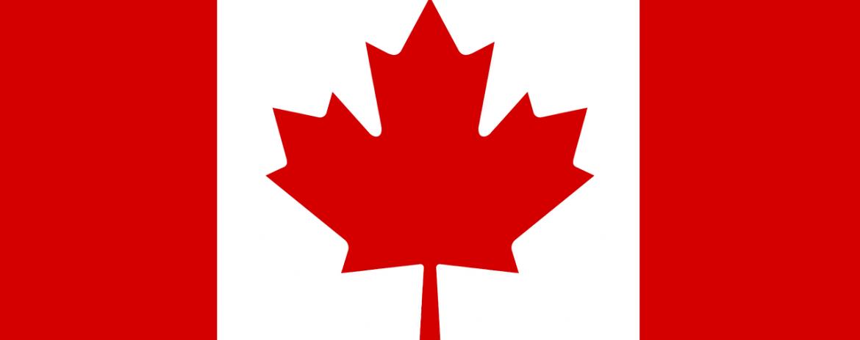 Canada Corporate Minute Book